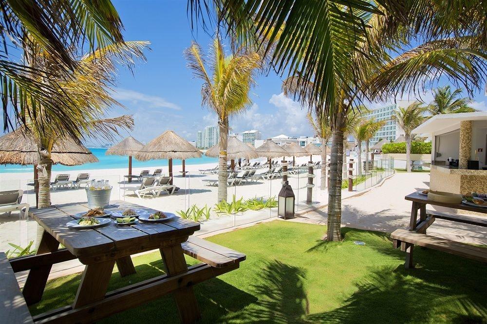 tree grass palm property leisure Resort plant Villa arecales caribbean condominium home swimming pool hacienda backyard mansion lined shore
