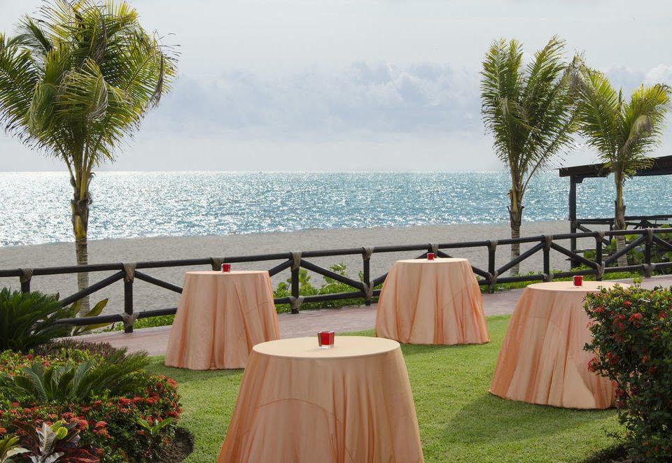 sky tree water palm Resort Villa home backyard arecales hacienda overlooking