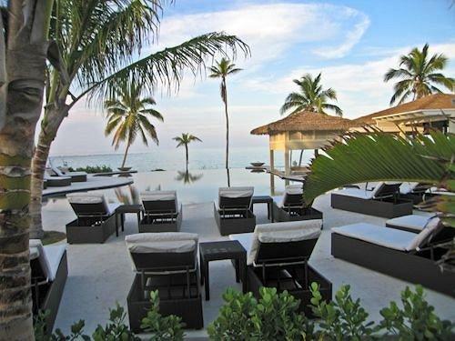 tree Resort property condominium caribbean palm arecales Villa plant eco hotel marina lined