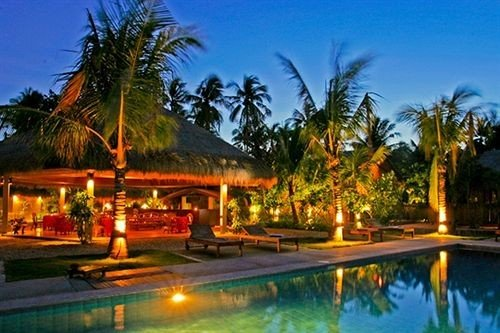 tree sky Resort leisure swimming pool arecales resort town caribbean eco hotel Villa palm lined