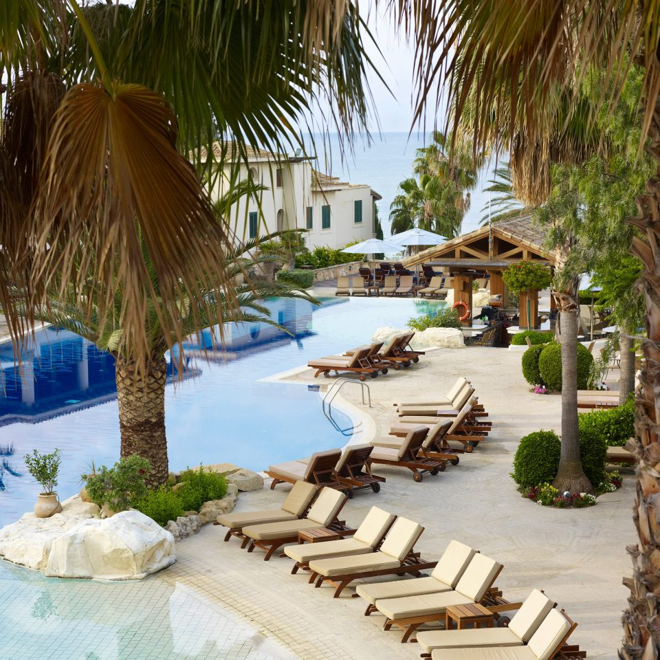 tree leisure swimming pool Resort arecales plant caribbean Villa palm surrounded sandy