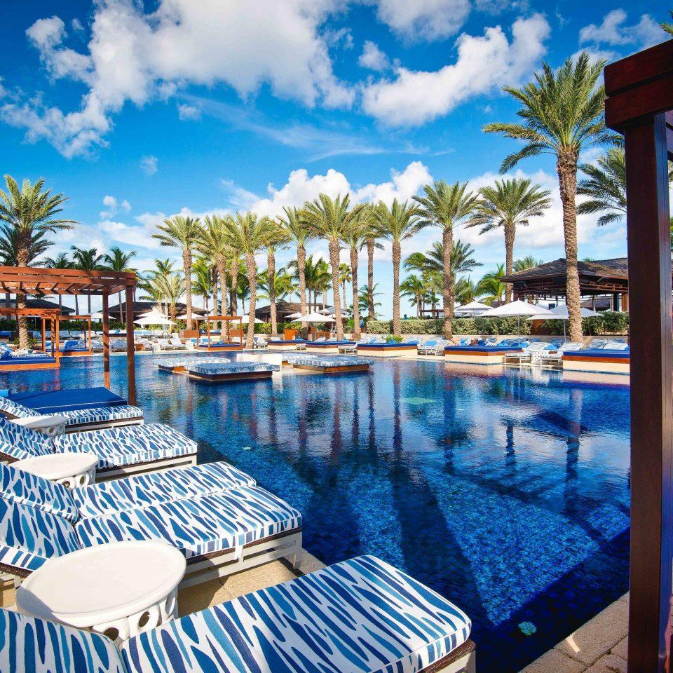 Resort leisure swimming pool resort town caribbean palm tree recreation Villa arecales