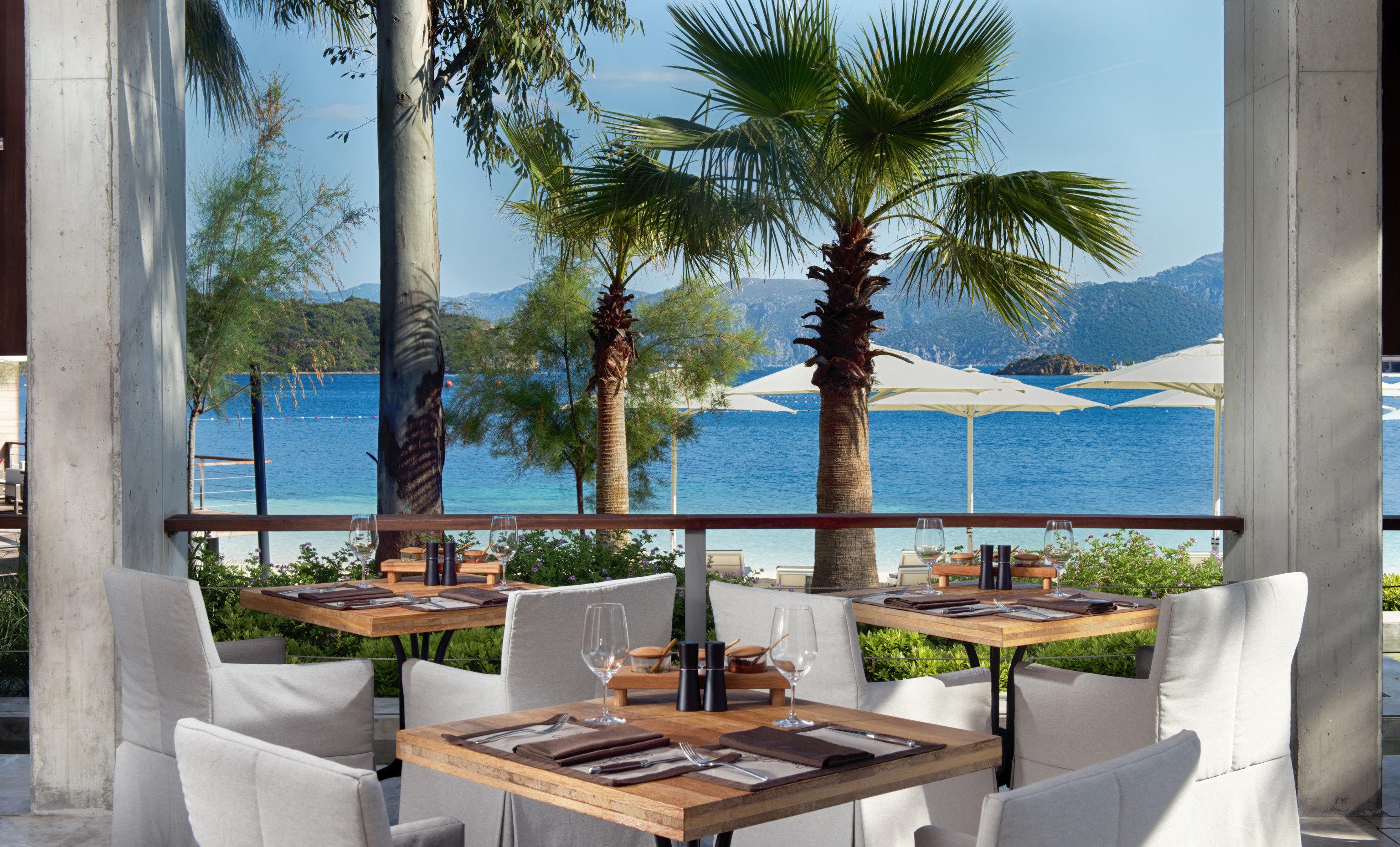 tree property condominium house home Resort Villa caribbean arecales swimming pool palm cottage mansion
