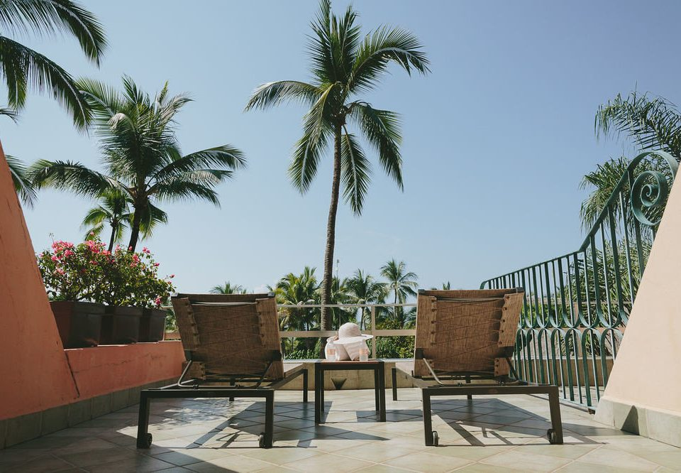palm sky chair property tree Resort Villa arecales condominium home palm family hacienda plant sandy
