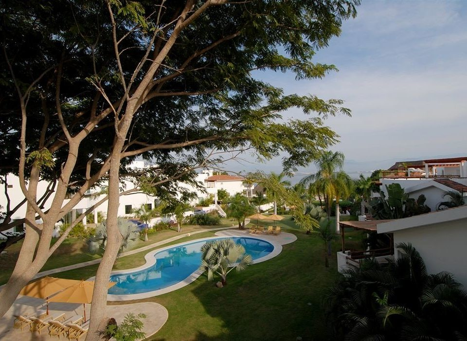 tree property Resort swimming pool plant Villa home arecales mansion condominium