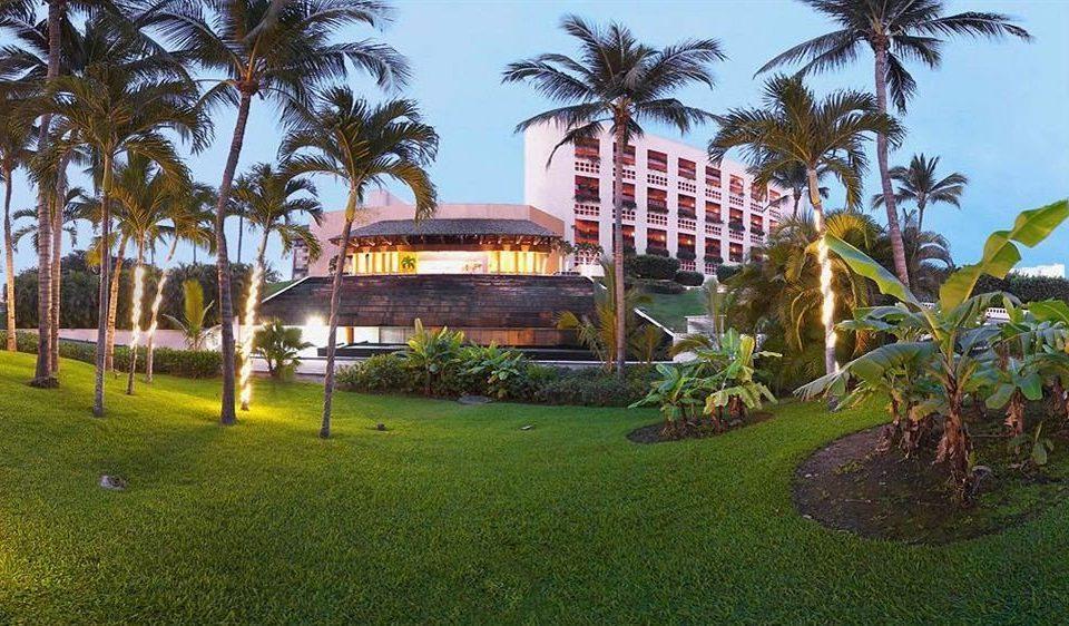 Resort tree grass sky palm property arecales hacienda Villa plant lush