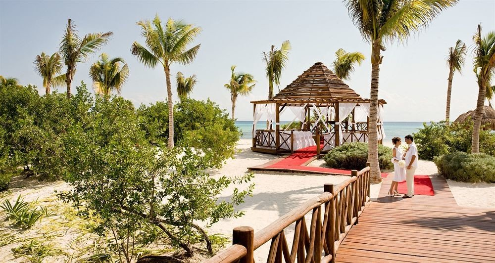 tree sky ground palm Resort park wooden arecales Villa walkway plant shade lined surrounded