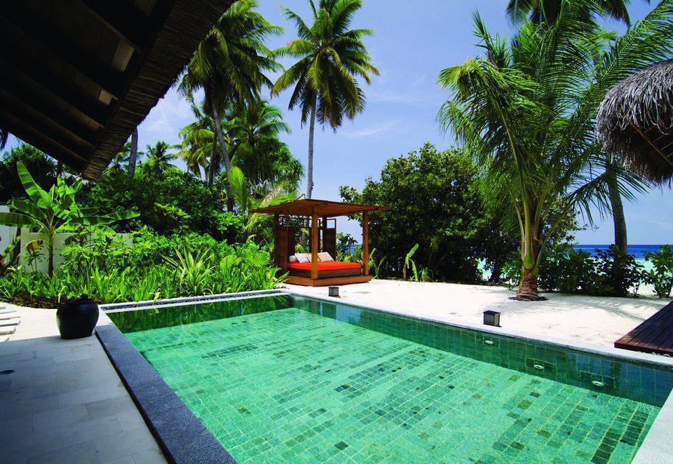 tree swimming pool property leisure Resort Villa palm backyard hacienda condominium eco hotel caribbean