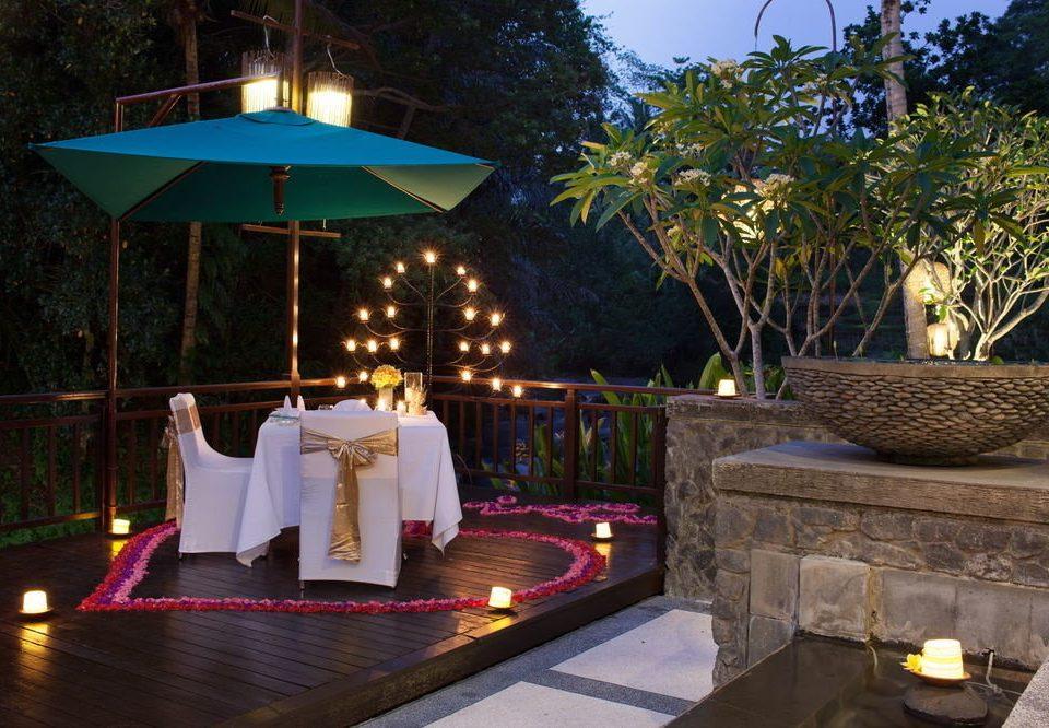 tree Resort restaurant lighting swimming pool backyard Villa