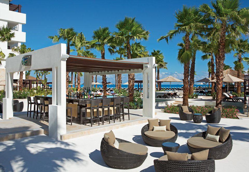 tree sky ground leisure building property Resort plaza condominium home Villa palm day