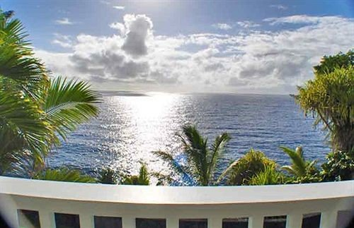 tree property plant ecosystem Resort swimming pool caribbean condominium Villa palm shore