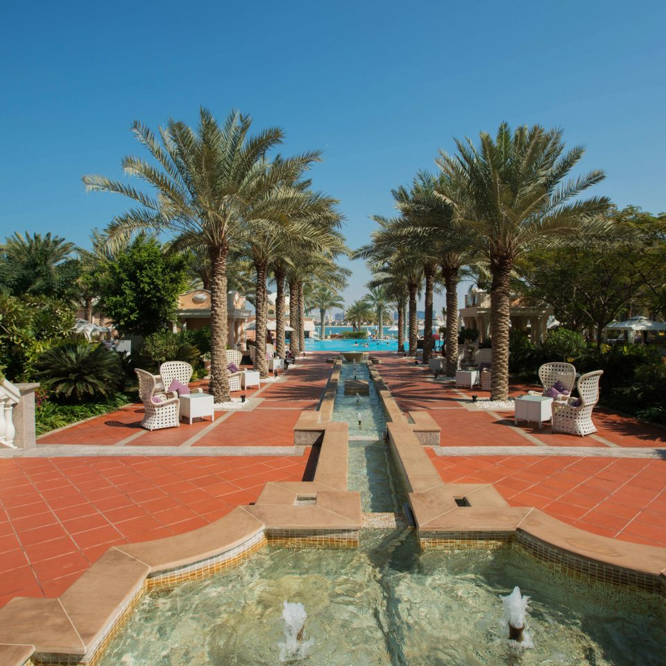 tree sky property swimming pool plaza Resort palace town square Villa walkway hacienda mansion