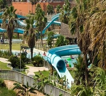 tree grass property leisure palm Resort Water park plant green swimming pool amusement park Villa