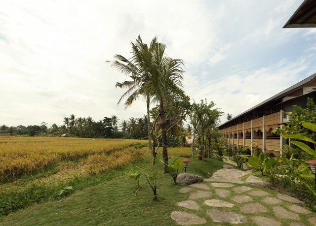 grass sky property tree Resort arecales residential area plantation plant agriculture Village