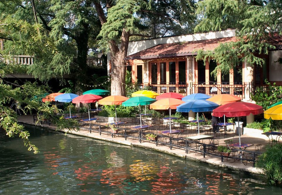 tree water leisure Resort swimming pool restaurant Village lined colorful surrounded colored