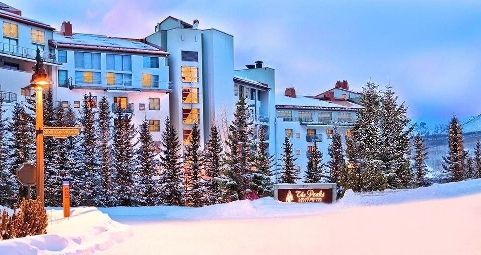 snow tree sky Winter Resort season