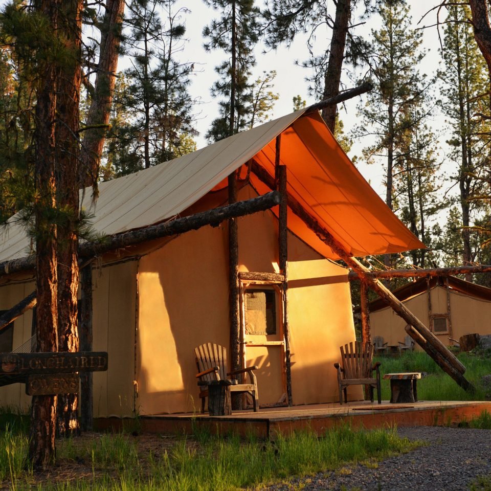 Road Trips Trip Ideas tree grass house log cabin building home hut shack cottage rural area outdoor structure