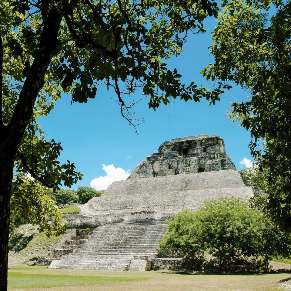 tree grass archaeological site sky monument historic site park maya civilization Ruins tourist attraction ancient history plant national park landscape