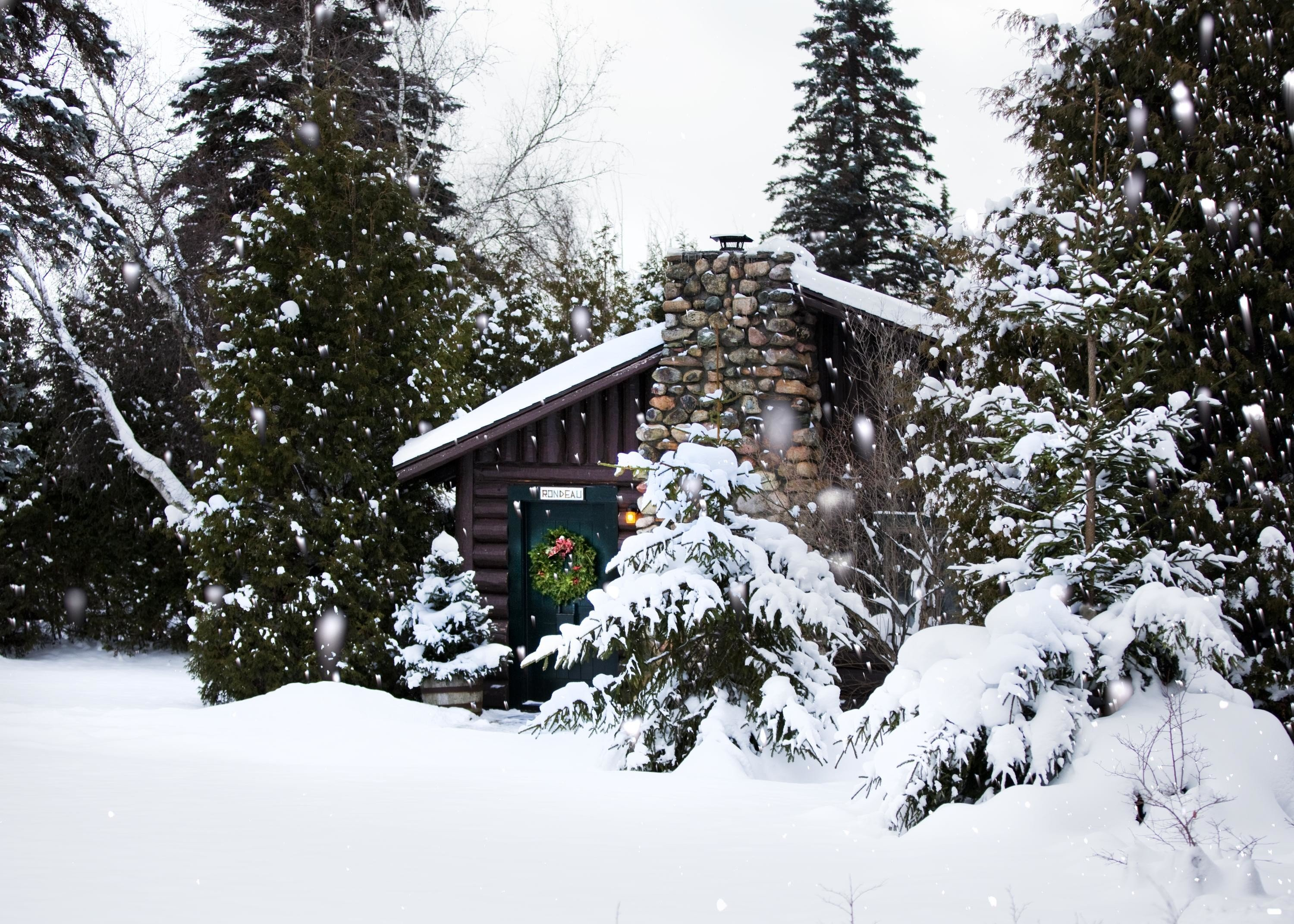 alpine skiing East Coast USA tree Trip Ideas outdoor snow Winter weather geological phenomenon season footwear woody plant house Forest slope skiing wooded