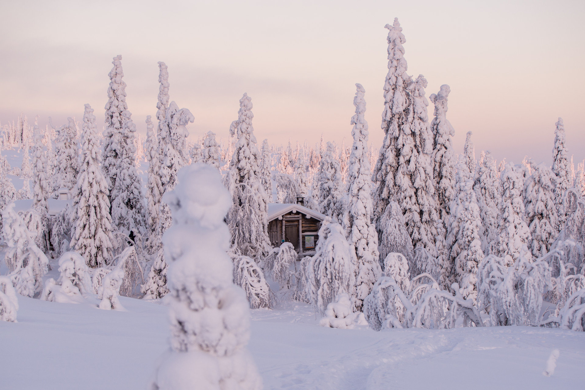 Boutique Hotels Romance Trip Ideas snow outdoor tree sky Winter covered atmospheric phenomenon weather Nature freezing season frost geological phenomenon ice winter storm blizzard slope day