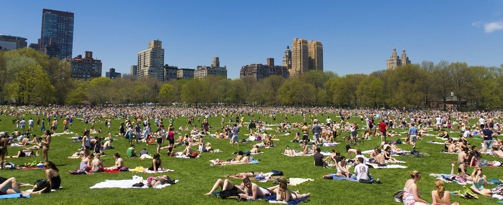 Arts + Culture grass outdoor field park people human settlement residential area grassy lawn crowd