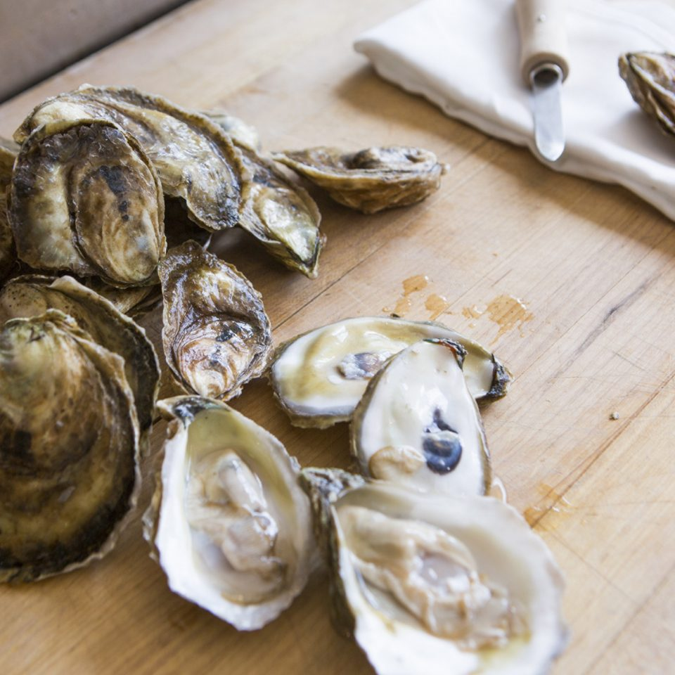 oyster food wooden animal Seafood mollusk clams oysters mussels and scallops invertebrate animal source foods clam oysters rockefeller recipe