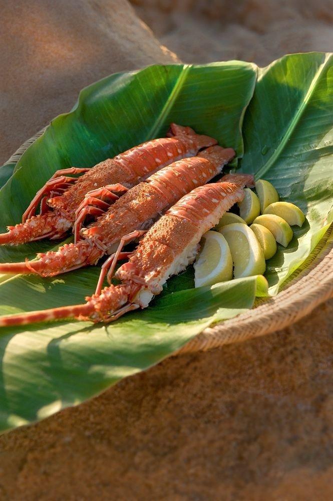 food animal arthropod cuisine fish Seafood asian food plant fresh