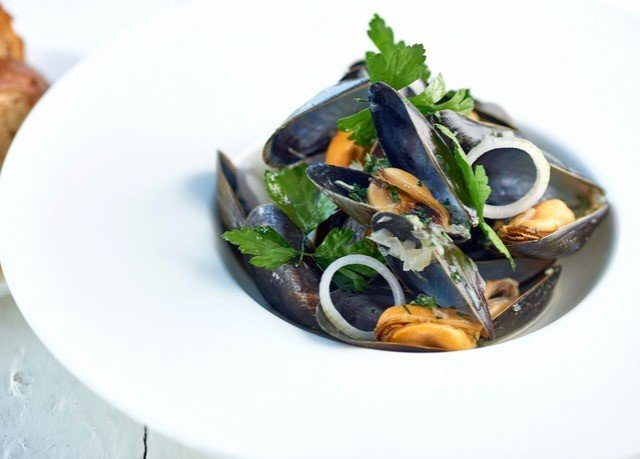 plate food mussel Seafood invertebrate fish animal source foods cuisine clams oysters mussels and scallops clam containing arranged