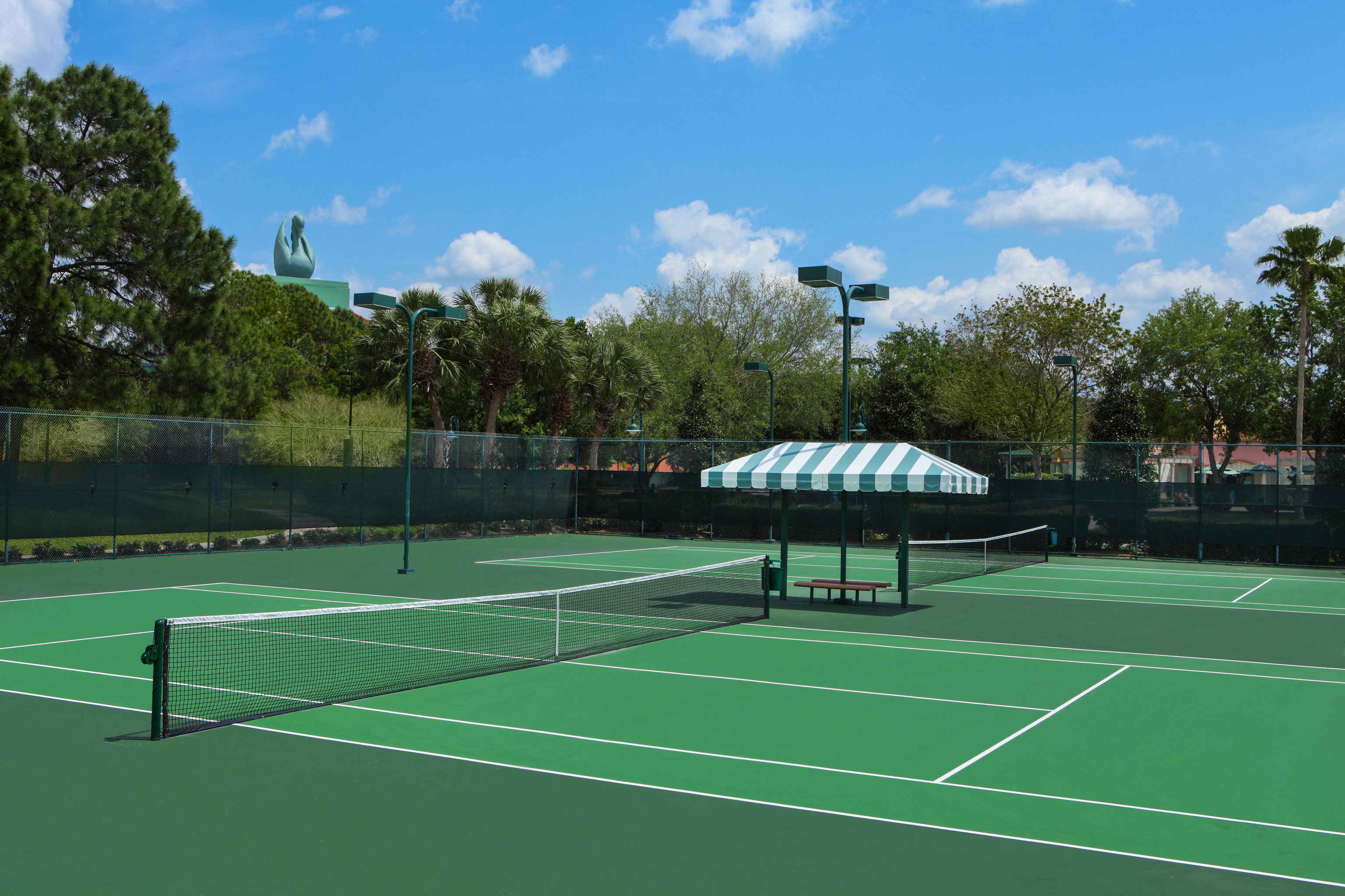 athletic game Sport tree sky structure tennis green sport venue tennis court ball game sports leisure racquet sport net baseball field soccer specific stadium day