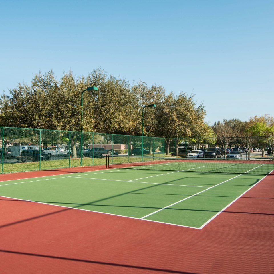 sky Sport athletic game tree structure sports sport venue tennis court tennis baseball field baseball park stadium