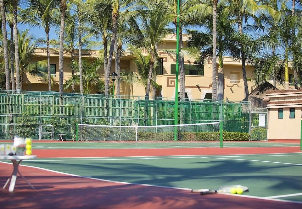 tree Sport athletic game structure court tennis sport venue baseball field sports tennis court stadium
