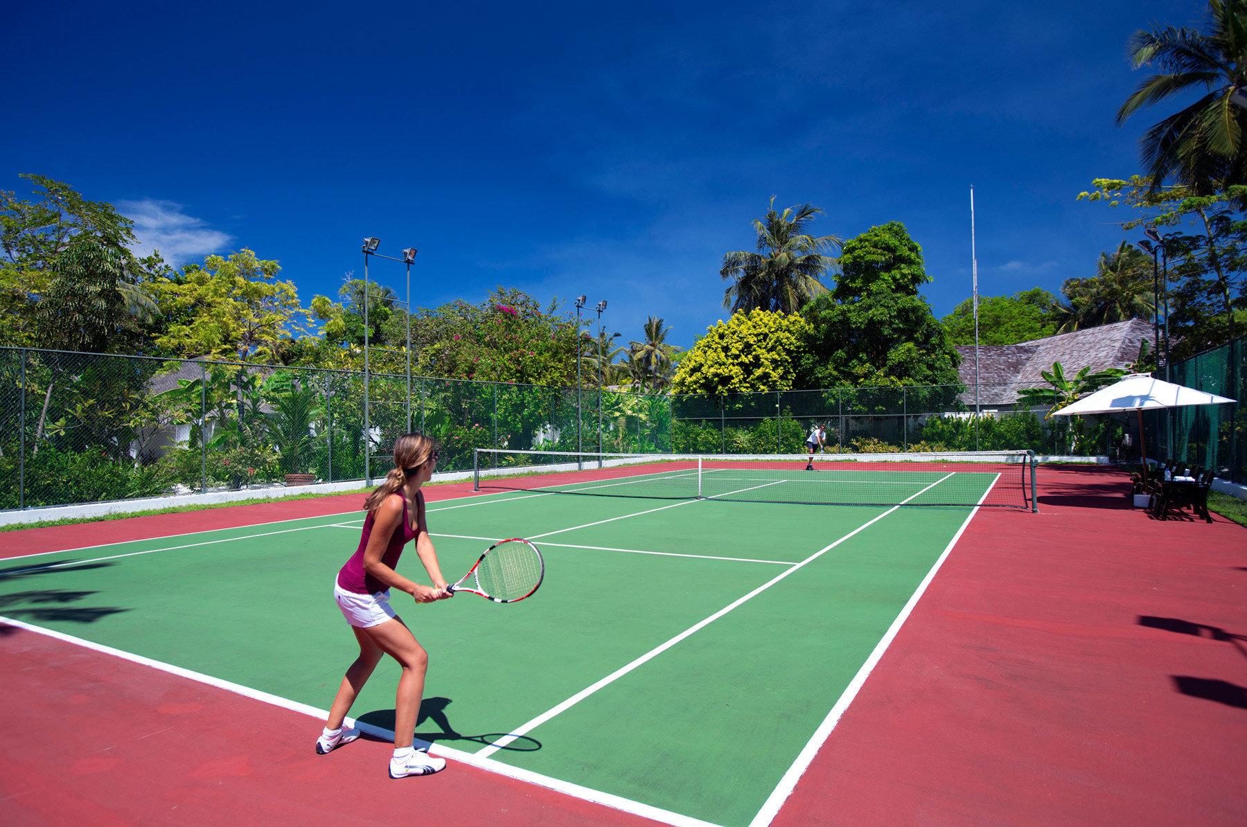 tree Sport athletic game tennis sky court structure sports leisure sport venue racquet sport tennis court