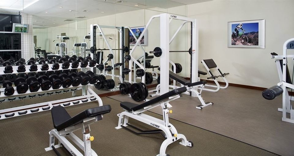 structure gym sport venue Sport office