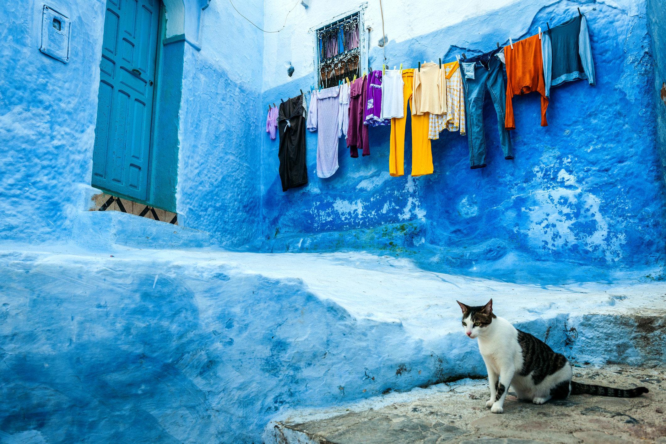 Offbeat Trip Ideas color blue Winter snapshot indoor water season vacation Sea snow ice colored