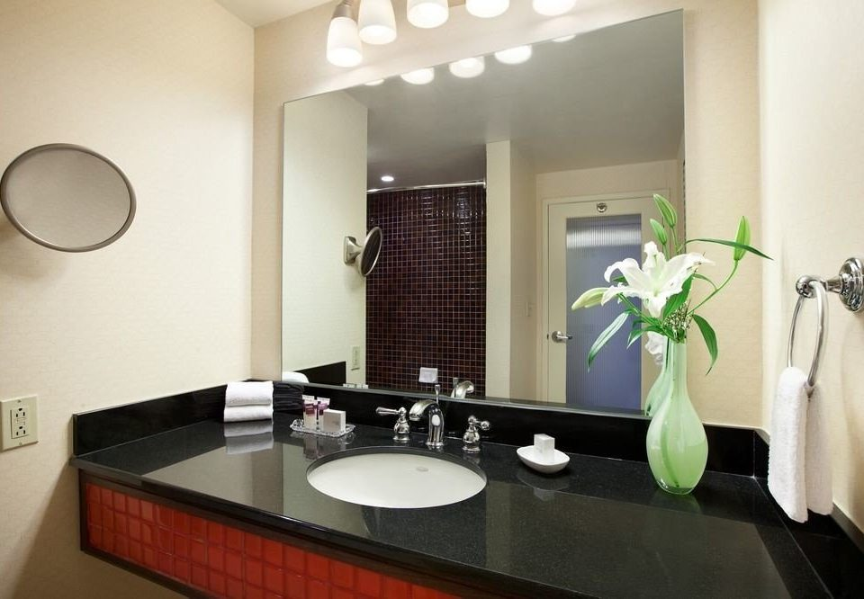 bathroom mirror sink property home Suite countertop