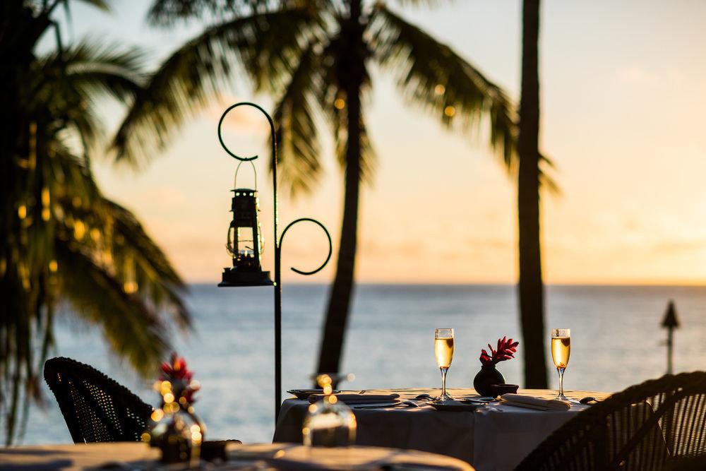 Sunset morning evening restaurant light tree plant