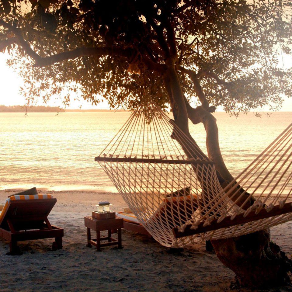 water morning sunlight evening Sunset sandy