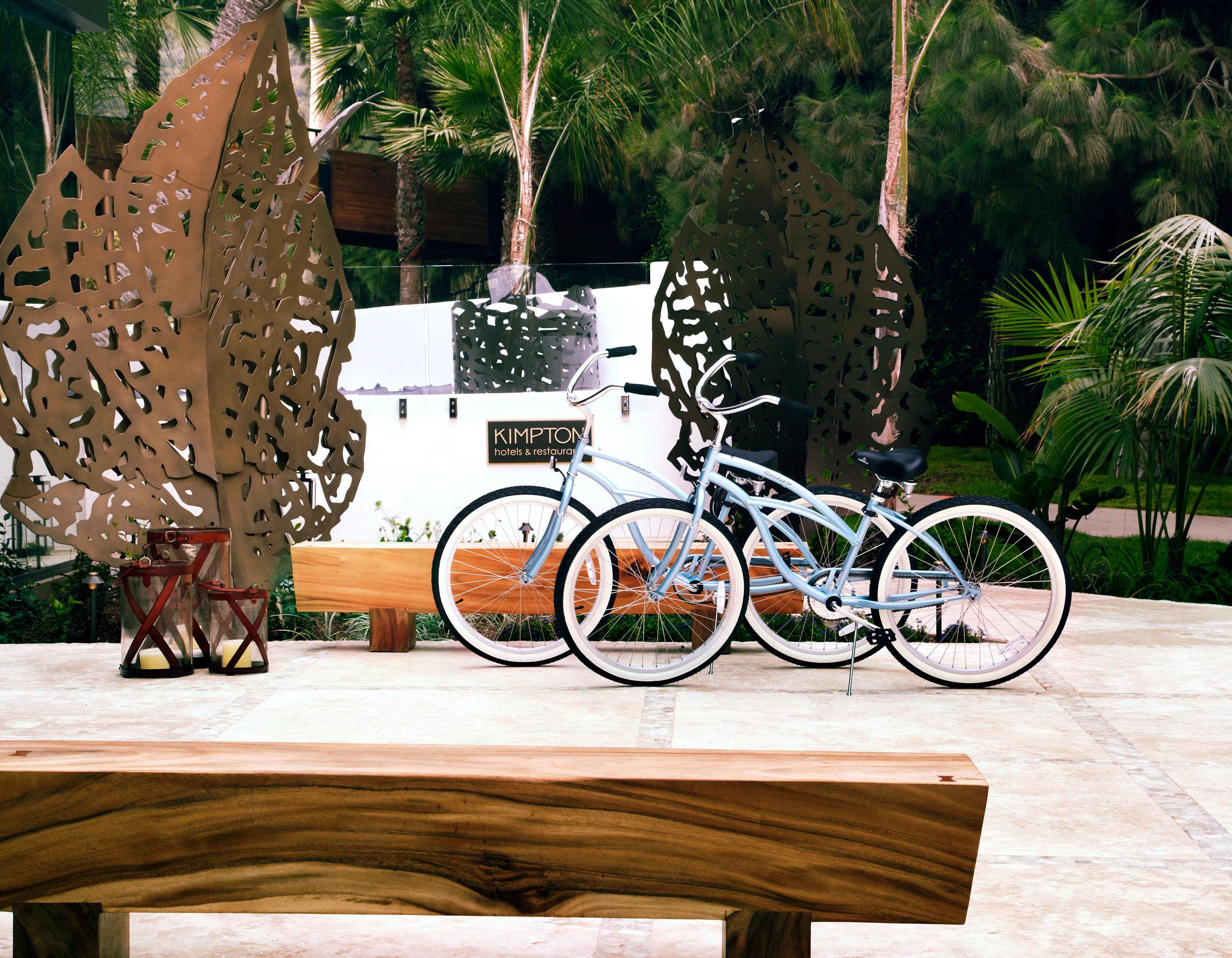 Grounds Hip Hotels Outdoors Sport Wellness tree outdoor ground vehicle art wood home
