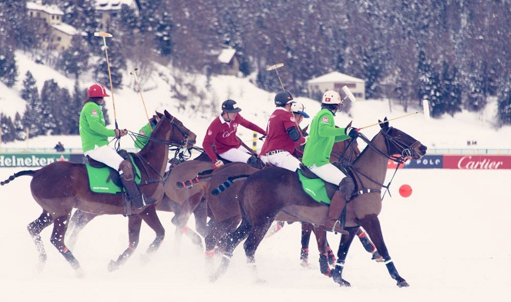 Style + Design outdoor snow skiing mountain sports stick and ball games polo Winter equestrian sport animal sports racing stick and ball sports slope