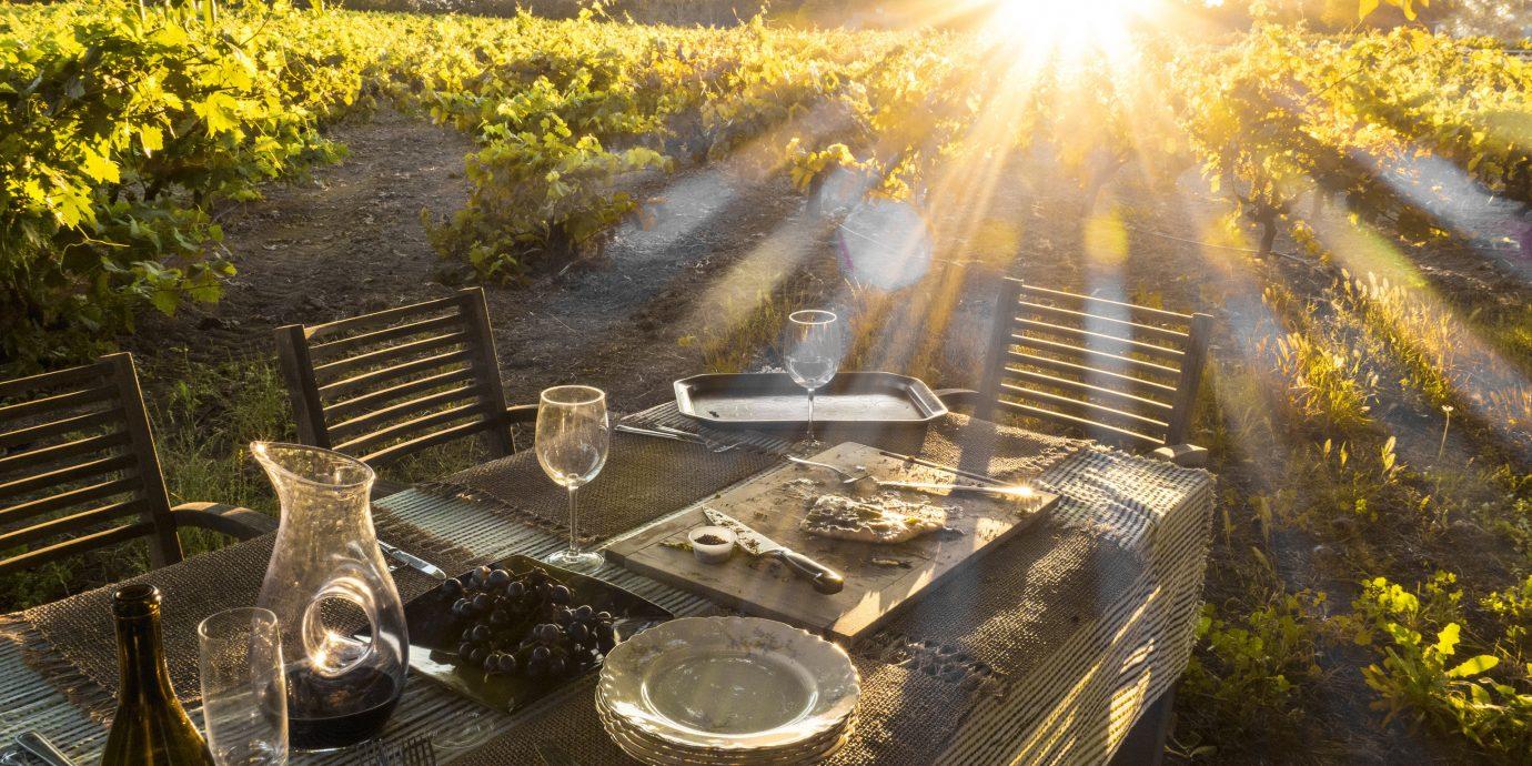 Food + Drink Trip Ideas outdoor sunlight screenshot autumn vehicle