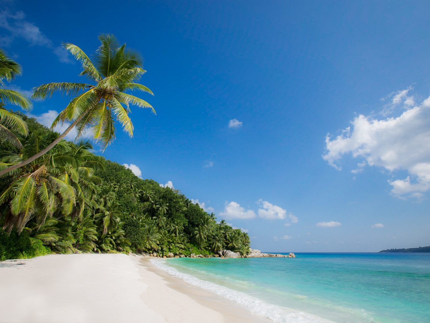 Islands Trip Ideas sky outdoor tree water Beach landform geographical feature body of water Nature caribbean Sea Coast shore Ocean vacation horizon palm tropics arecales Island bay Lagoon cape islet sandy day distance