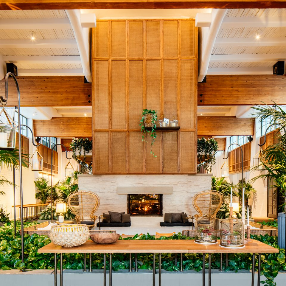 indoor space with lots of greenery