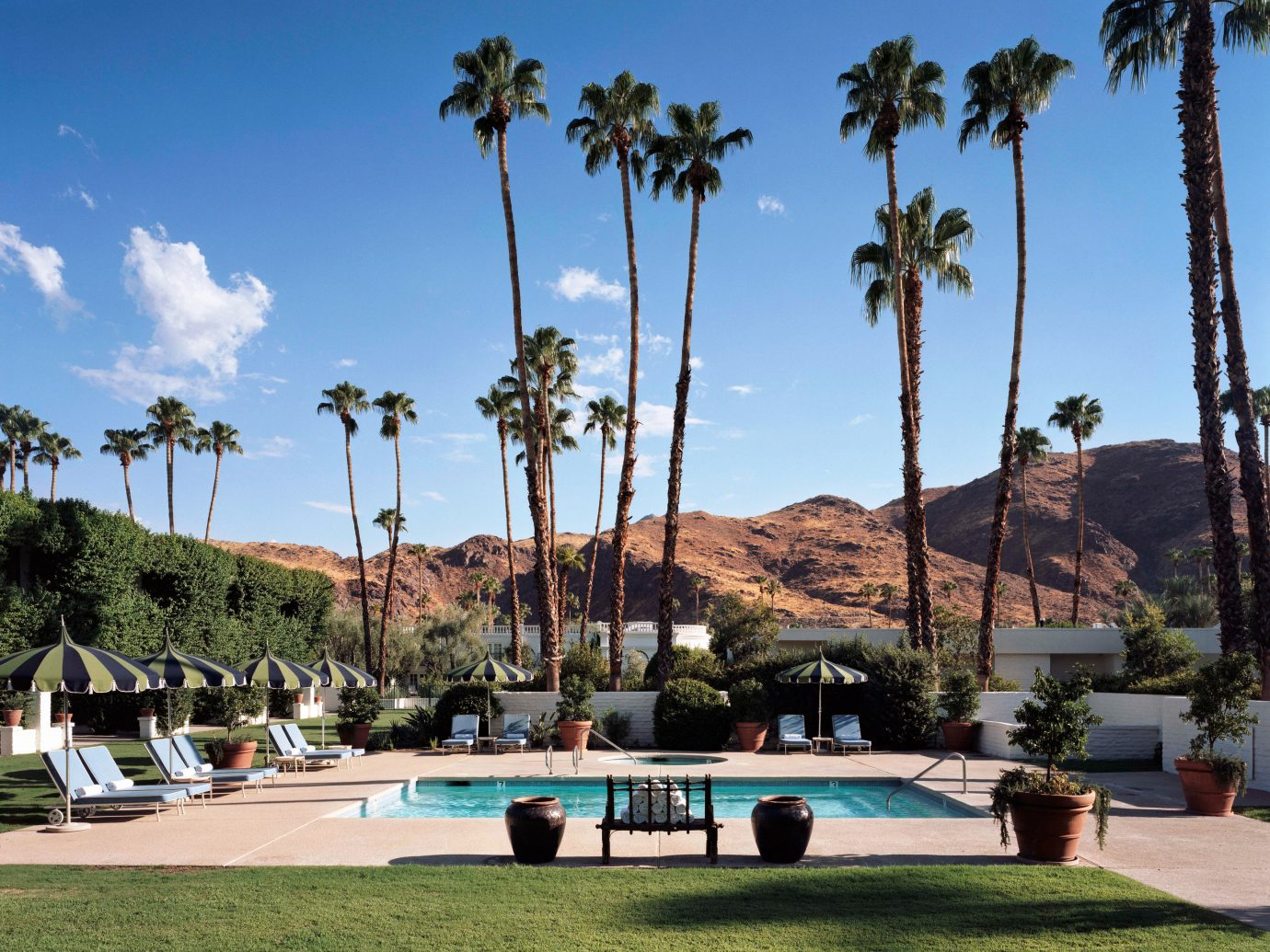 Boutique Hotels Festivals + Events Hotels Trip Ideas sky outdoor tree property estate vacation Resort palm arecales swimming pool Villa palm family plant