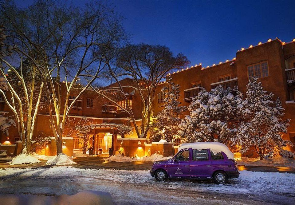 tree snow weather night Winter Town evening orange