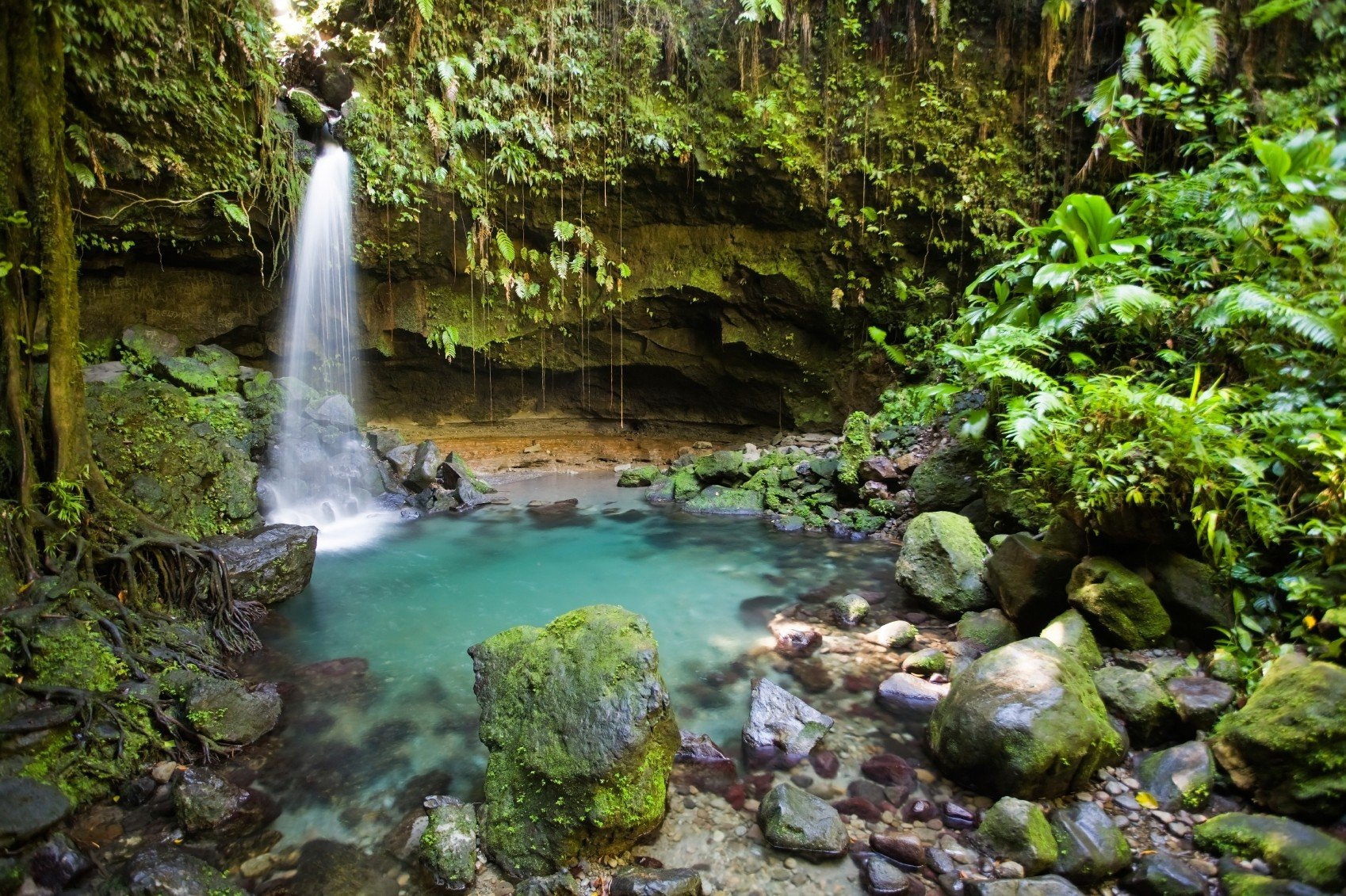 caribbean Secret Getaways Trip Ideas outdoor habitat Nature Waterfall vegetation body of water water watercourse rock stream rainforest water feature Forest River Jungle woodland old growth forest area surrounded