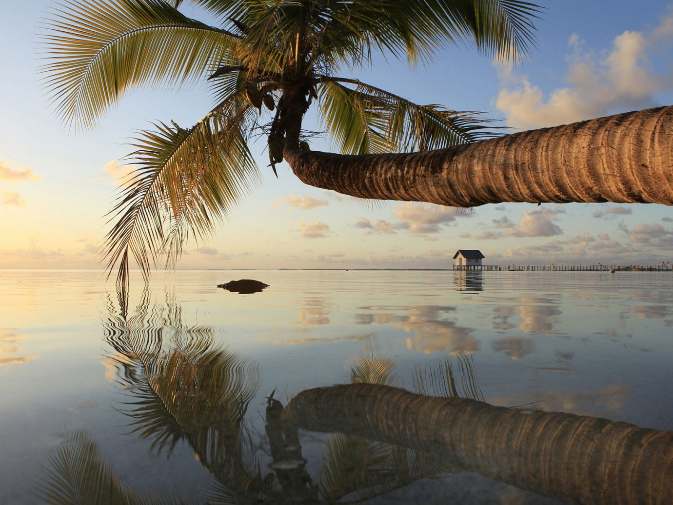 Islands Trip Ideas water outdoor sky Nature tree reflection plant Sea shore Sunset morning Lake Ocean vacation arecales woody plant palm family evening sunlight Beach Coast dusk sunrise palm
