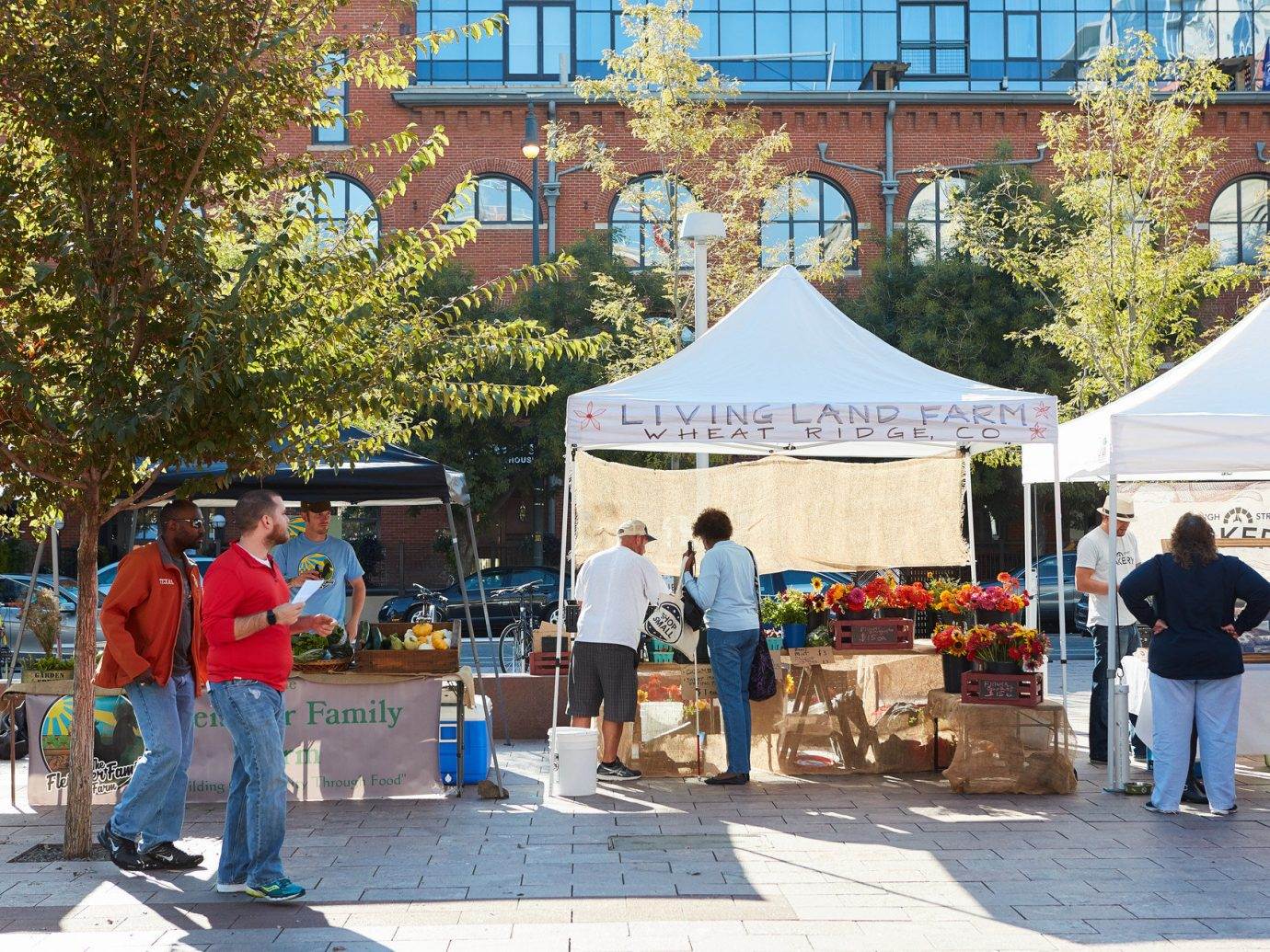 Buildings charming City city streets farmers market Food + Drink fresh fruit Greenery market markets organic Outdoor Activities Outdoors park people produce quaint shopping stand streets trees vegetables tree outdoor person public space fair tourism group festival Playground