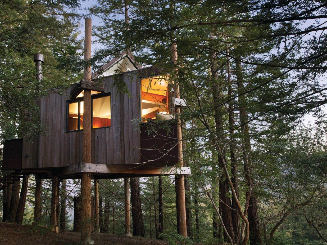 Hotels Trip Ideas tree outdoor house tree house log cabin home outdoor structure Forest wood wooded several