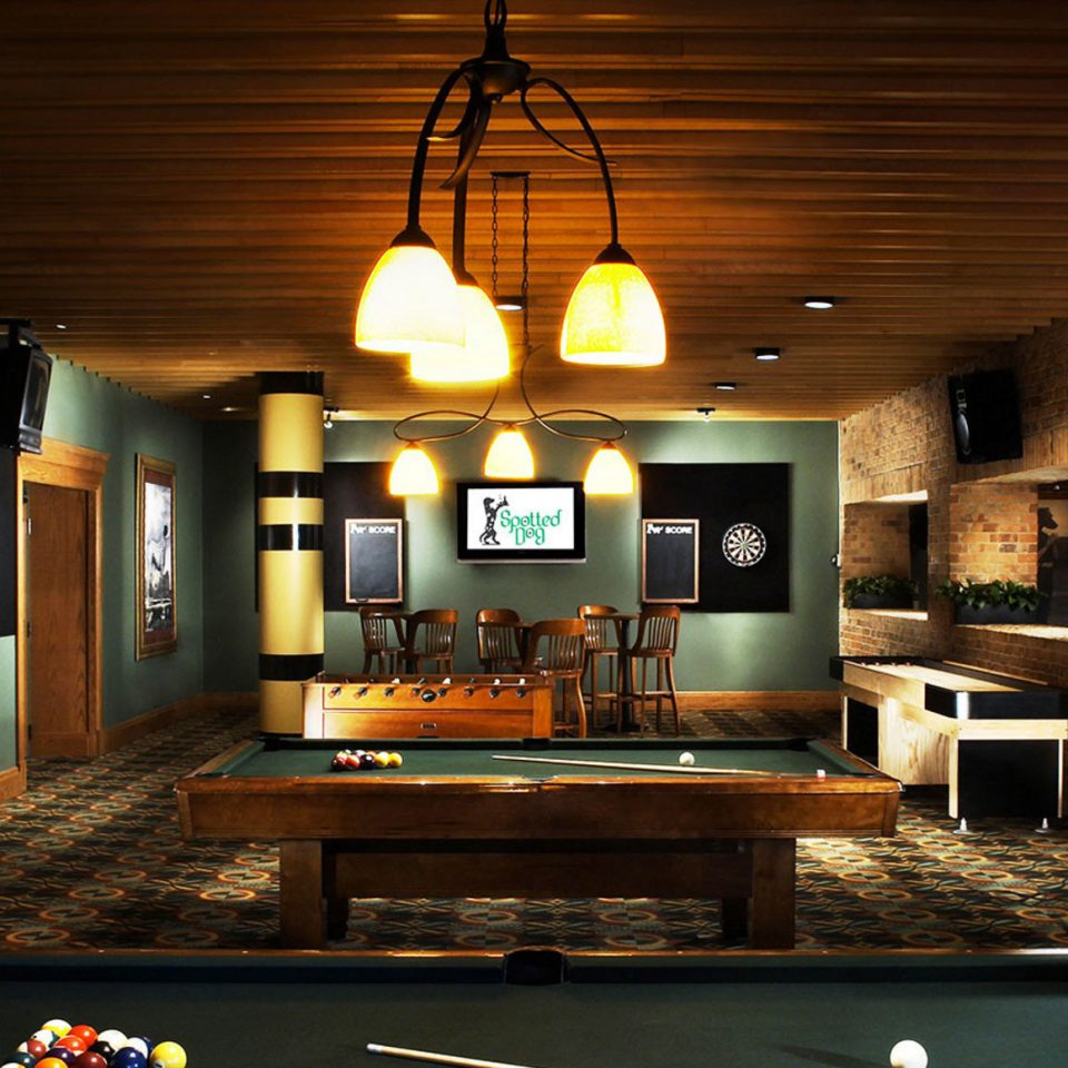 property recreation room billiard room home mansion living room lighting cottage Villa farmhouse
