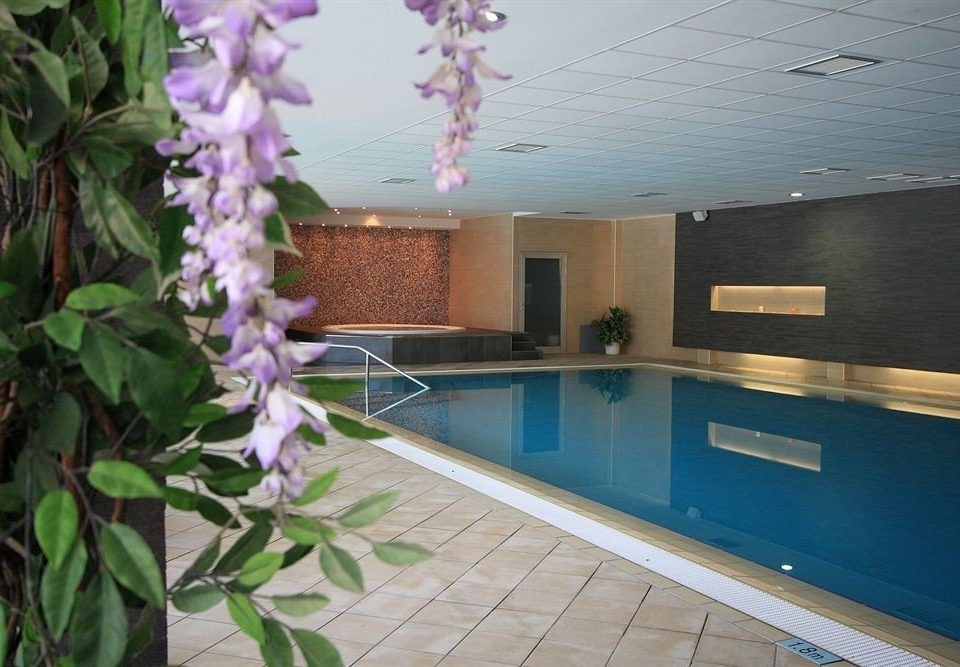 property swimming pool home flower plant Villa